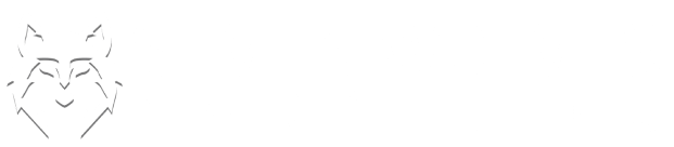 Seven Wolves Digital Marketing Agency Singapore